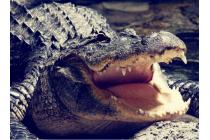 """Фирменный роскошный эксклюзивный чехол с объёмным 3D изображением рельефа кожи крокодила коричневый для ASUS ZenFone Go ZB551KL  / Go TV ZB551KL 5.5"""". Только в нашем магазине. Количество ограничено"""