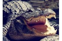 """Фирменная роскошная эксклюзивная накладка с объёмным 3D изображением рельефа кожи крокодила коричневая для Huawei Honor V8 Dual Sim 4G 5.7"""". Только в нашем магазине. Количество ограничено"""