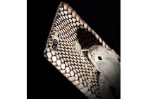 """Фирменная роскошная экзотическая задняя панель-крышка с фактурной отделкой натуральной кожи с объёмным 3D изображением змеи белый для Huawei Honor V8 Dual Sim 4G 5.7"""" Только в нашем магазине. Количество ограничено"""