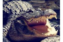 """Фирменная неповторимая экзотическая панель-крышка обтянутая кожей крокодила с фактурным тиснением для Huawei P9 Lite / G9 / Dual Sim LTE 5.2""""  тематика """"Африканский Коктейль"""". Только в нашем магазине. Количество ограничено."""
