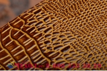 Фирменный роскошный эксклюзивный чехол с объёмным 3D изображением кожи крокодила коричневый для Philips Xenium W6610/W6618 . Только в нашем магазине. Количество ограничено