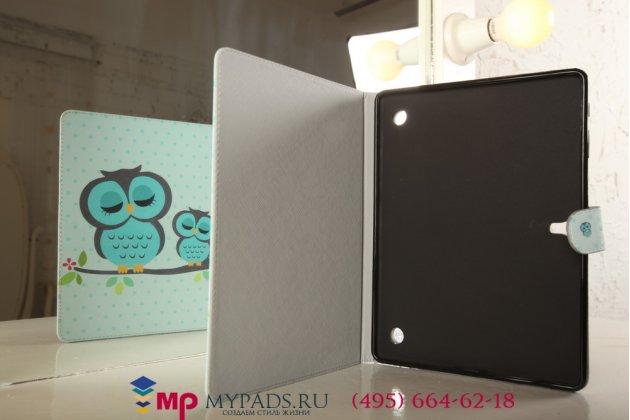 """Фирменный эксклюзивный необычный чехол-футляр для Samsung Galaxy Tab S 10.5 SM-T800/T801/T805  """"тематика Совы"""""""