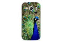"""Фирменная необычная из легчайшего и тончайшего пластика задняя панель-чехол-накладка для Samsung Galaxy Ace Style LTE SM-G357FZ """"тематика Павлин"""""""