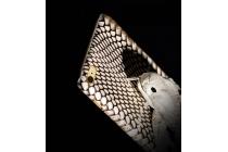 """Фирменная роскошная экзотическая задняя панель-крышка с фактурной отделкой натуральной кожи с объёмным 3D изображением змеи белый для Sony Xperia C6 / C6 Ultra / XA Ultra 6.0"""" (F3212 /F3216). Только в нашем магазине. Количество ограничено"""
