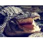 """Фирменный роскошный эксклюзивный чехол с объёмным 3D изображением кожи крокодила коричневый для  ZTE Axon Max 6.0"""" (C2016). Только в нашем магазине. Количество ограничено"""