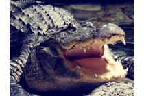 Фирменный роскошный эксклюзивный чехол с фактурной прошивкой рельефа кожи крокодила и визитницей коричневый для Samsung Galaxy C7 Pro SM-C7010. Только в нашем магазине. Количество ограничено