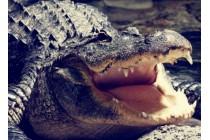 Фирменный роскошный эксклюзивный чехол с фактурной прошивкой рельефа кожи крокодила и визитницей коричневый для Samsung Galaxy J3 (2017) SM-J330F. Только в нашем магазине. Количество ограничено